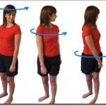 scoliosis exercices